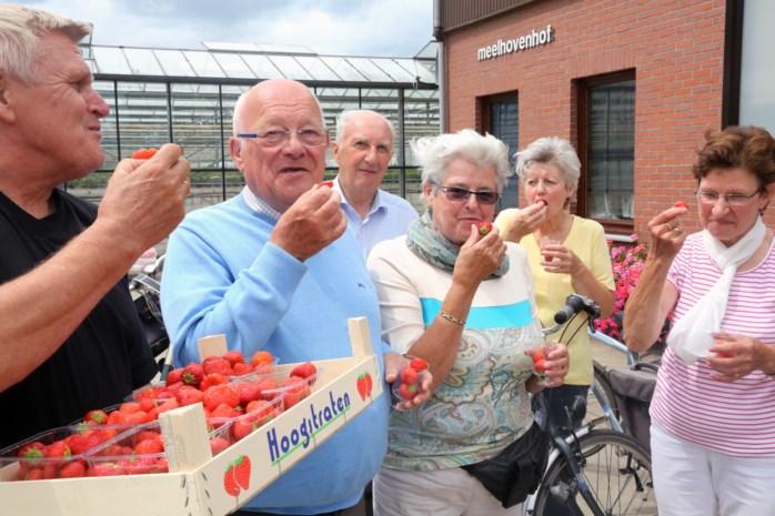 Duizend fietsers genieten van lekkere aardbeien