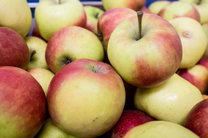 Rusland verbiedt groenten en fruit uit Polen