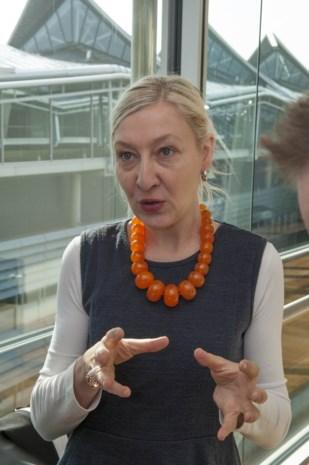 Tomorrowland en Sinksenfoor-advocate Cnudde wil alle verkeer uit Gentse stadskern