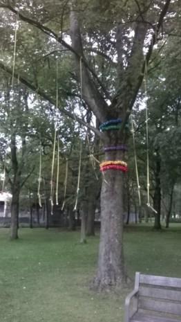 De eerste tutjesboom staat in het Brilschanspark