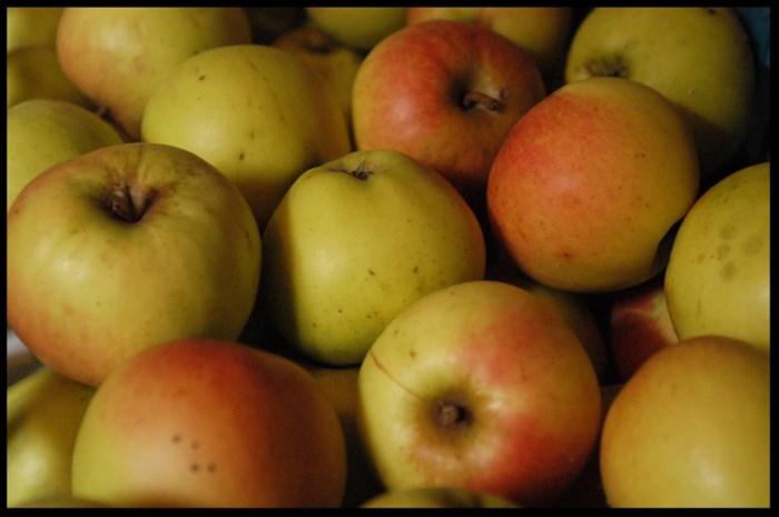 Ruim 13 procent appelteelt wordt niet geoogst