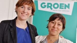 Strijd om Groen-voorzitterschap wordt duel tussen Van den Brandt en Almaci