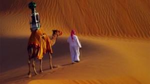 Google zet Street View-camera op kameel
