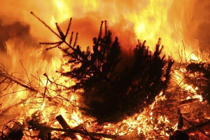 Vrijdag gezellige kerstboomverbranding