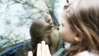 Jonge kinderen en rouwen