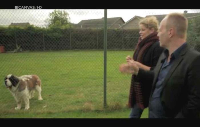 Hoe de gravelbaan van Kim Clijsters plots een hondenhok werd