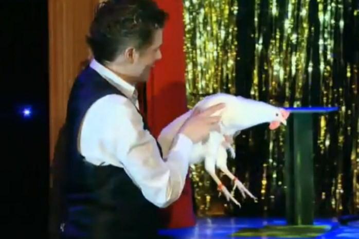 Ongezien: Deze kip kan vuurspuwen