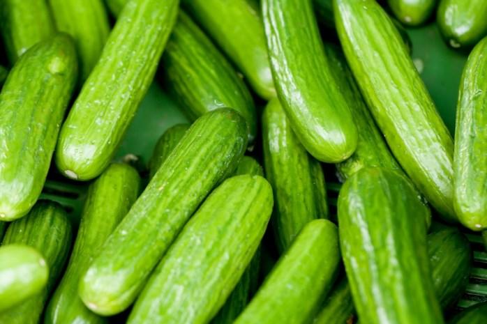 Oekraïner krijgt 10.000 euro schadevergoeding voor politiegeweld na diefstal komkommers