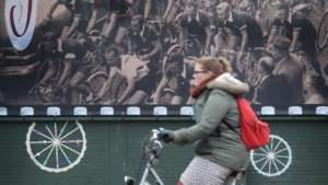 IN BEELD: Oud-Berchem, door de ogen van onze fotograaf