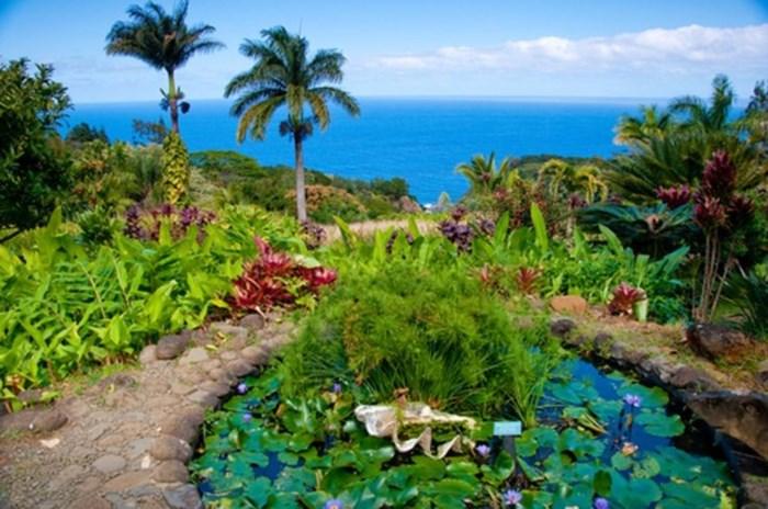 Deze eilanden zijn de mooiste ter wereld