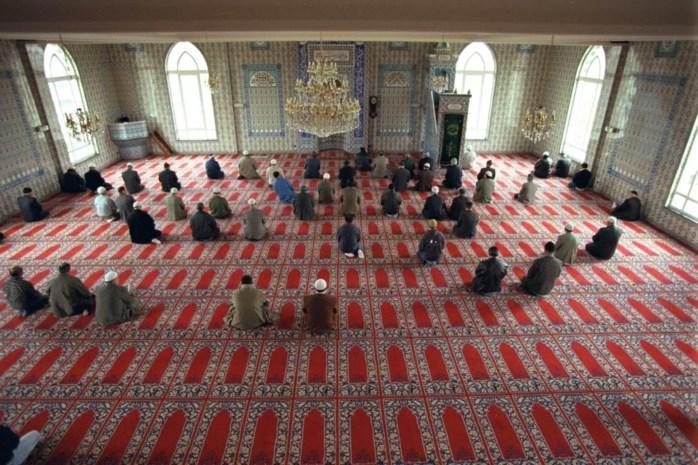 """""""Universiteit Antwerpen is de enige unief in Europa die op bachelorniveau een vak 'Islamic Worlds' verplicht opneemt in het curriculum. Een primeur waar ze trots mag op zijn."""""""