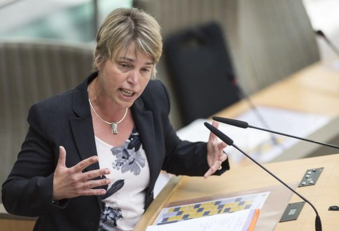 Schauvliege: 'Fijnstofnorm werd vorig jaar niet overschreden in Vlaanderen'