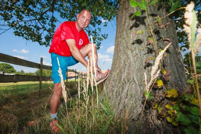 Wiekevorstse wandelaar wandelt 161 kilometer lange Centurion Ultramarathon uit