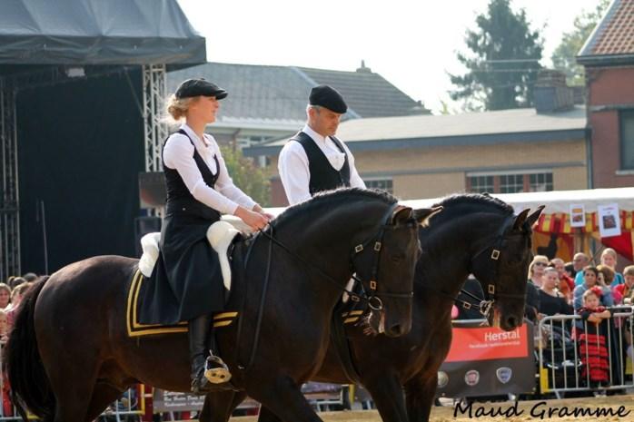 Groots Paardentreffen in Gerhagen