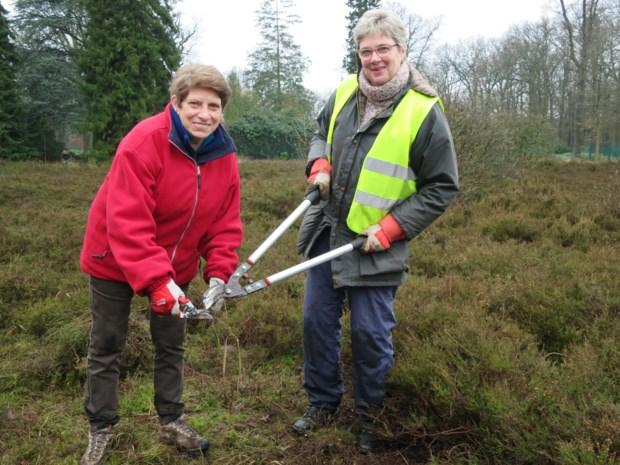 Vrijwilligers helpen groenarbeiders van park Vordenstein