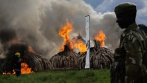 """IN BEELD. """"Brandend ivoor staat symbool voor onze vastberadenheid"""""""