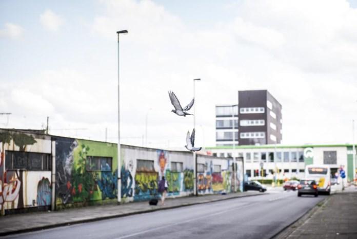 Op stap langs Antwerpse wijken Quartier Latin en Luchtbal