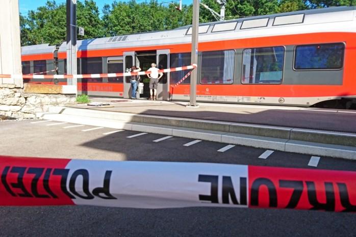 Dader van aanval op trein in Zwitserland is overleden