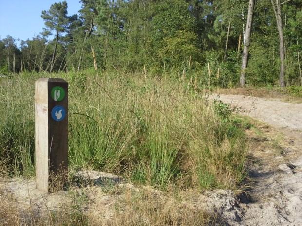 Nieuwe wandelroutes op grens België-Nederland