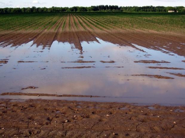 Vlaamse regering erkent noodweer van mei en juni officieel als ramp