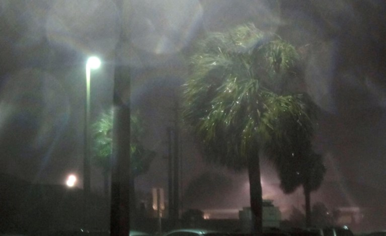Dodelijk slachtoffer in Florida
