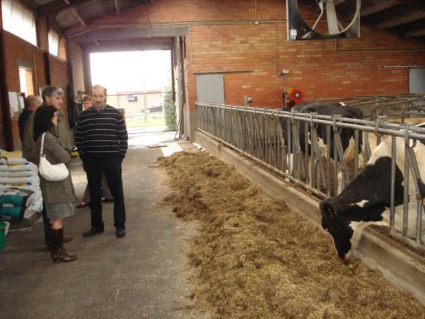 Dag van Landbouw in Overbroek focust op bosbouw