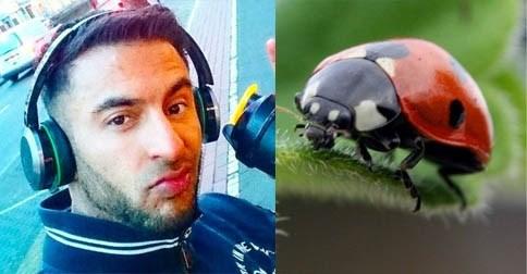 Leven van Engelse bodybuilder hangt aan zijden draadje door lieveheersbeestje