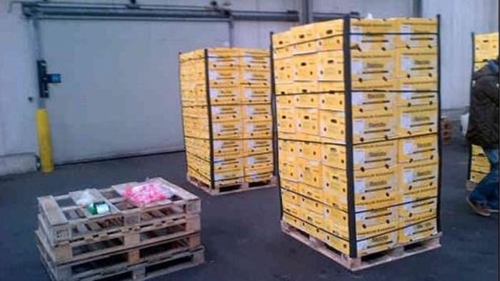 Nog eens 1,8 ton cocaïne gevonden in Antwerpse haven: teller op 28 ton dit jaar