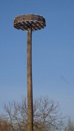 'Gemeentelijke loft' voor ooievaars