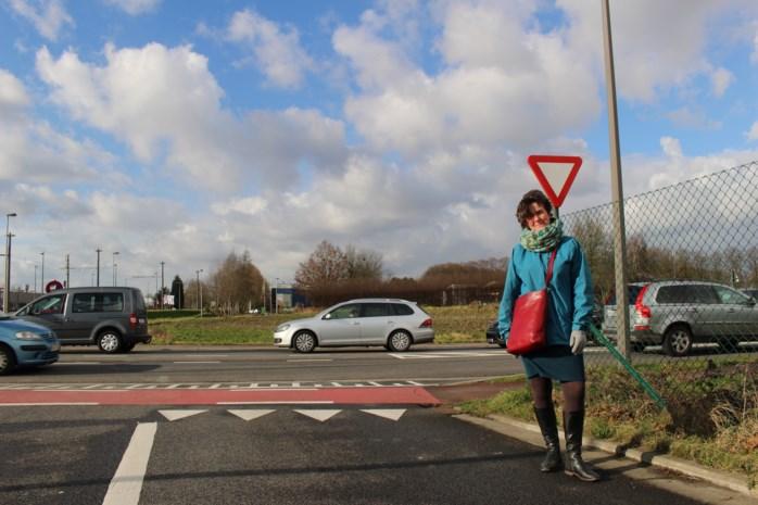 """""""De oprit van de autostrade begint straks in Boechout"""""""