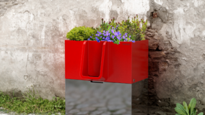 Parijs heeft bloembakken waarin je wel mag plassen
