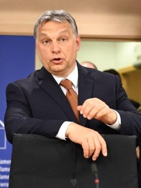 """Verhofstadt aan Hongaarse premier: """"U heeft elke Europese waarde geschonden"""""""