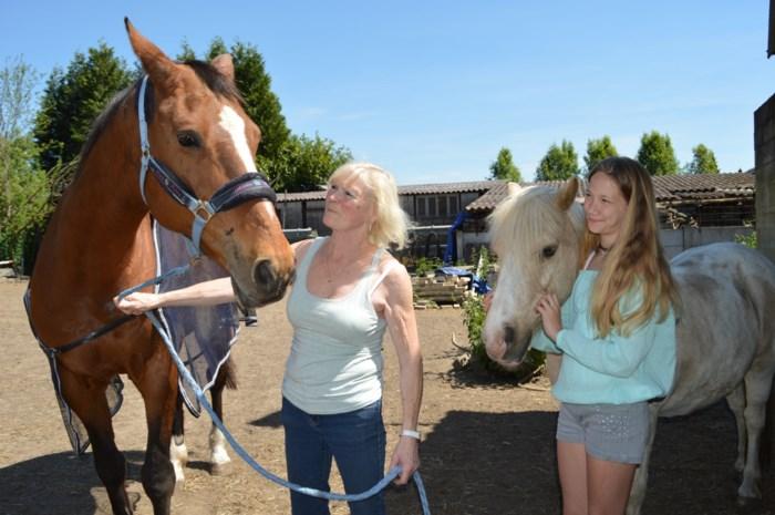 """Twee gruwelijke gevallen van paardenmishandeling: """"Ik vrees dat het dezelfde sadist is"""""""