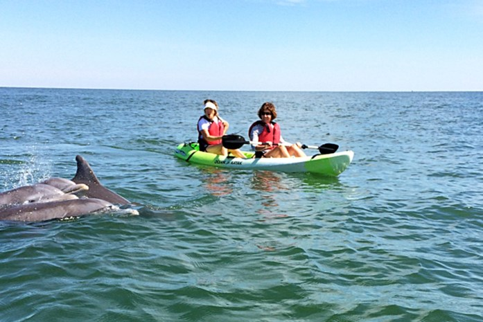 Virginia Beach: Kajakken tussen de dolfijnen