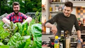 Wetenschappelijk bewezen: eten op tv doet kinderen meer eten