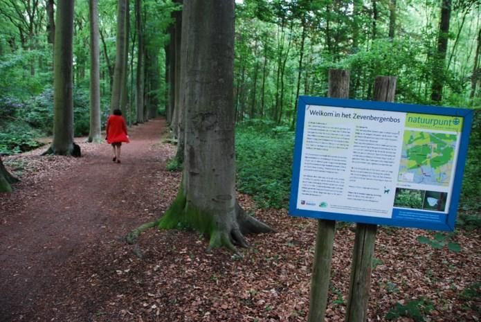 Maak een veldexcursie in het Zevenbergenbos