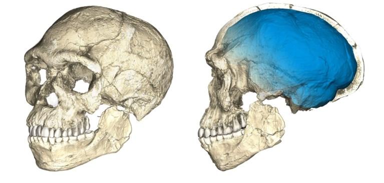 Verbijsterend: de mens is 100.000 jaar ouder dan we dachten