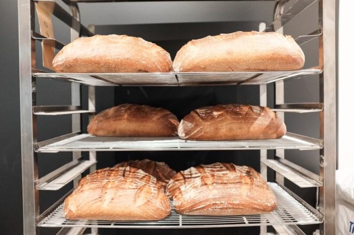 Is wit brood beter dan volkorenbrood voor mensen met gevoelige darmflora?