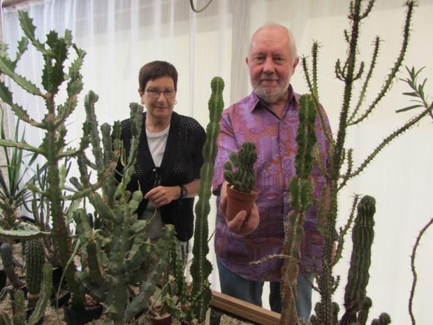 Frank en Diane reizen om Zuid-Afrikaanse planten te verzamelen