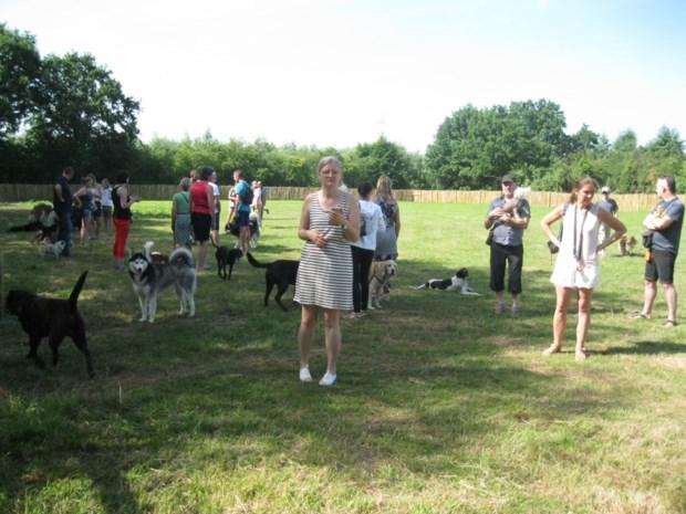 Hondenloopzone aan De Reukens officieel ingehuldigd.