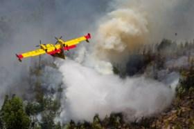 Dodental blijft oplopen: 62 doden bij hevige bosbranden in Portugal