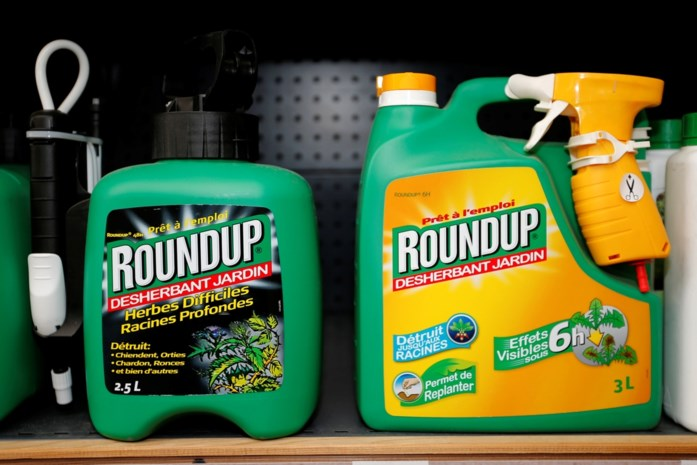 Terwijl Vlaanderen Roundup verbiedt, wil Europa de onkruidverdelger onbeperkt toelaten