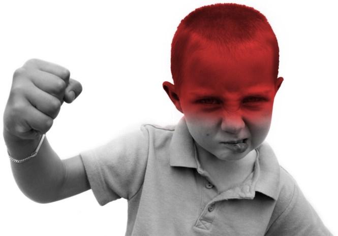 """Radicalisering op de basisschool niet waarschijnlijk: """"Kleuters gebruiken geen geweld"""""""