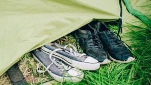 Parket onderzoekt klacht over verkrachting op Pukkelpopcamping
