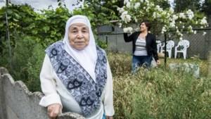 """<strong></strong>Moeder van Groen-voorzitster Meyrem Almaci: """"Ik ben nooit Belg geworden. Ik kan dus niet op mijn dochter stemmen"""""""