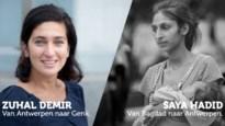 11.11.11 zet Demir, Almaci en Turtelboom neer als vluchtelingen