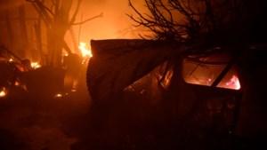 Meer dan twintig doden bij bosbranden in Portugal en Spanje