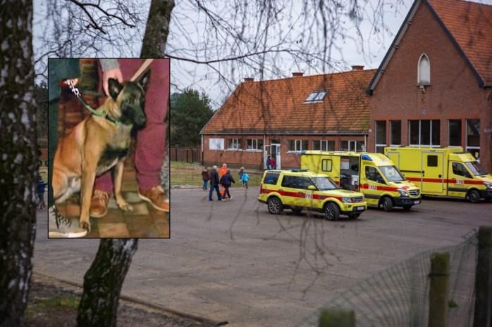 Actie en online petitie voor hond die twaalf kinderen verwondde op speelplaats