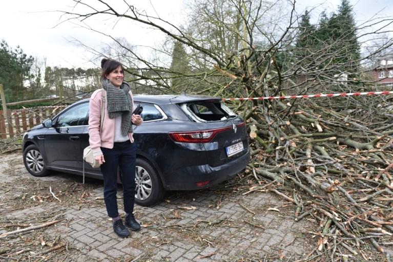 """Boom valt op speelplaats, auto zwaar beschadigd: """"Onze stoelen trilden, gelukkig was het nét geen speeltijd"""""""