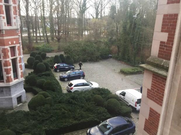 Boom valt op parking gemeentehuis